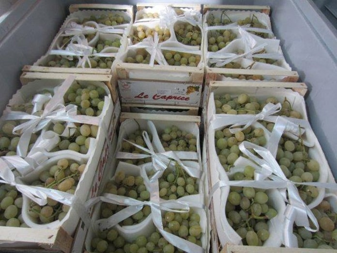uvas freshbox