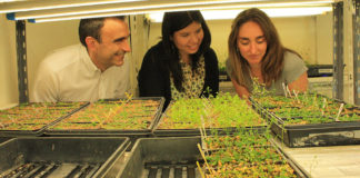 Jorge Casal, Martina Legris y Cecilia Costigliolo. Foto: gentileza Fundación Instituto Leloir.