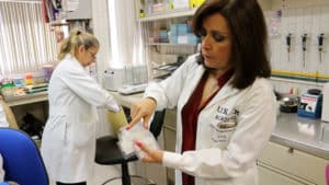 Investigadores de la UNAM desarrollan un detector portátil de enfermedades renales
