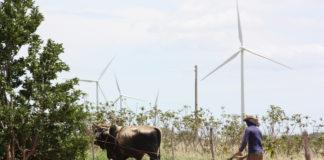 Parque eólico Los Calangos, de Iberdrola Brasil