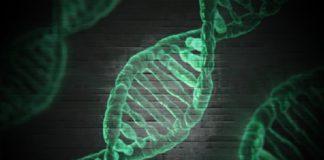 biotecnologia INE