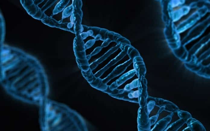 cancer biotecnologia