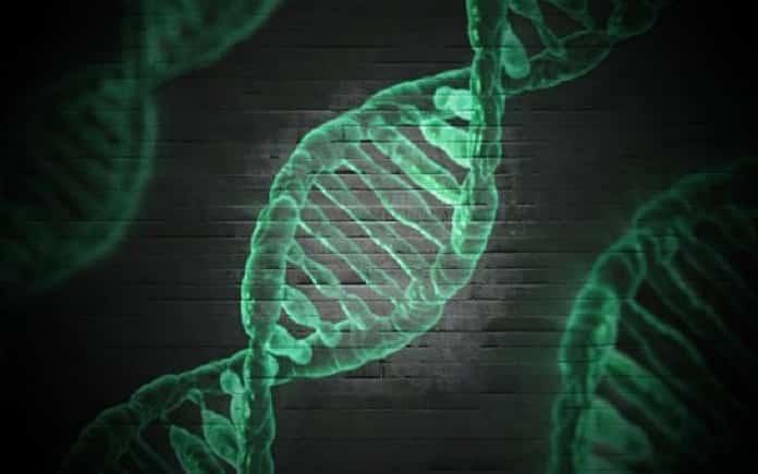 colageno cultivos celulares