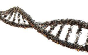 diagnostico genetico Imegen Genetaq