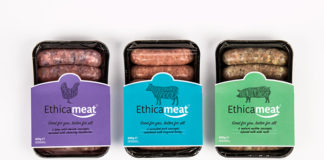 Biotech Food Ethic Meat