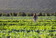 Ibercaja agricultura inteligente