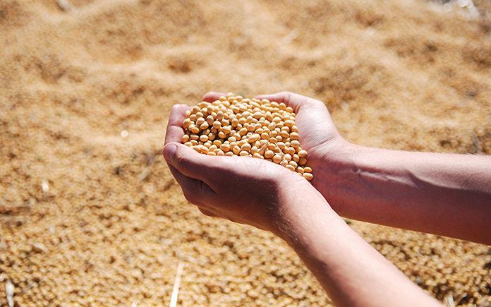 agroalimentacion, caixabank, agro innovaspain