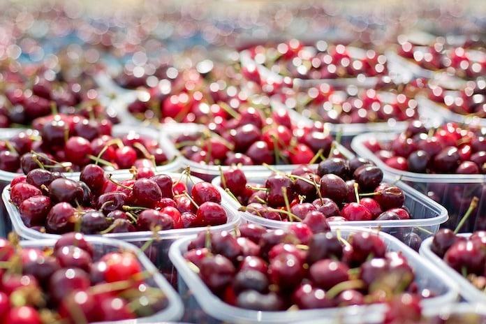 Con la cereza electrónica, el INTA quiere preservar la calidad del fruto