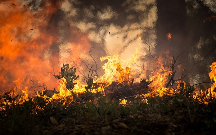 IBM inteligencia artificial incendios forestales