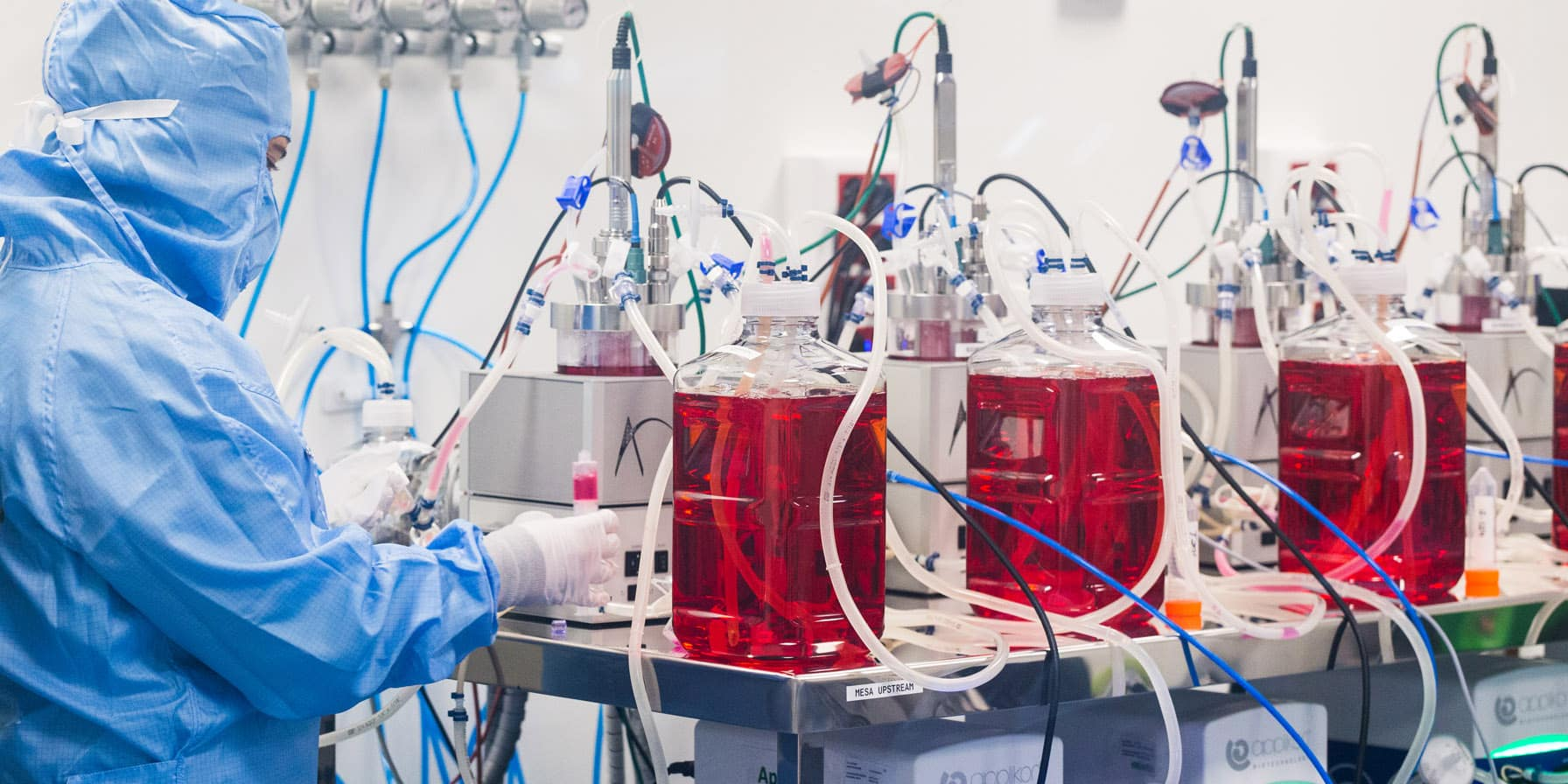 vivebiotech gurutz linazasoro biotecnologia terapias genicas vectores virales lentivirales